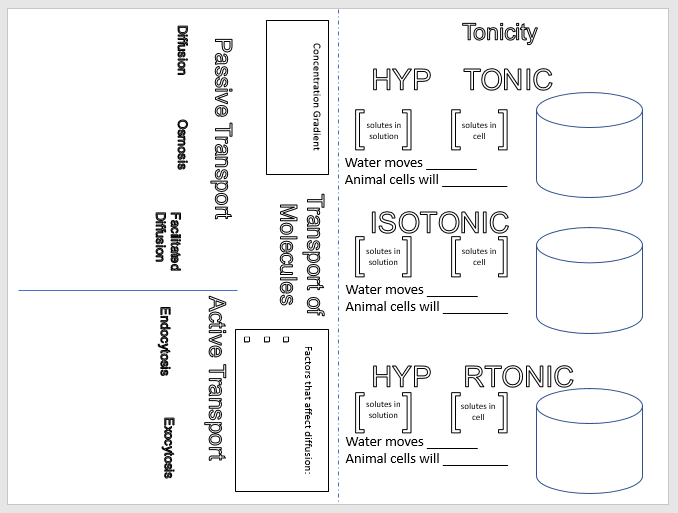 We teach high school cell transport and tonicity handout and i like both being on one page because it seems to streamline making copies and passing out papers ccuart Image collections