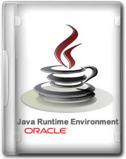 Java Runtime Environment 1.6.0.25