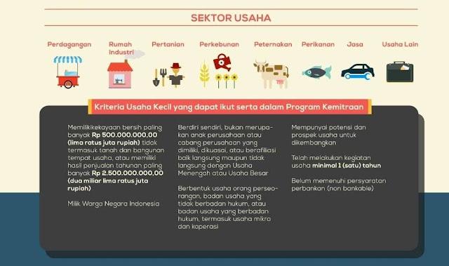 CARA MENDAPATKAN PINJAMAN PROGRAM KEMITRAAN BUMN : Sektor usaha dan Kriteria Usaha Kecil Program Kemitraan BUMN