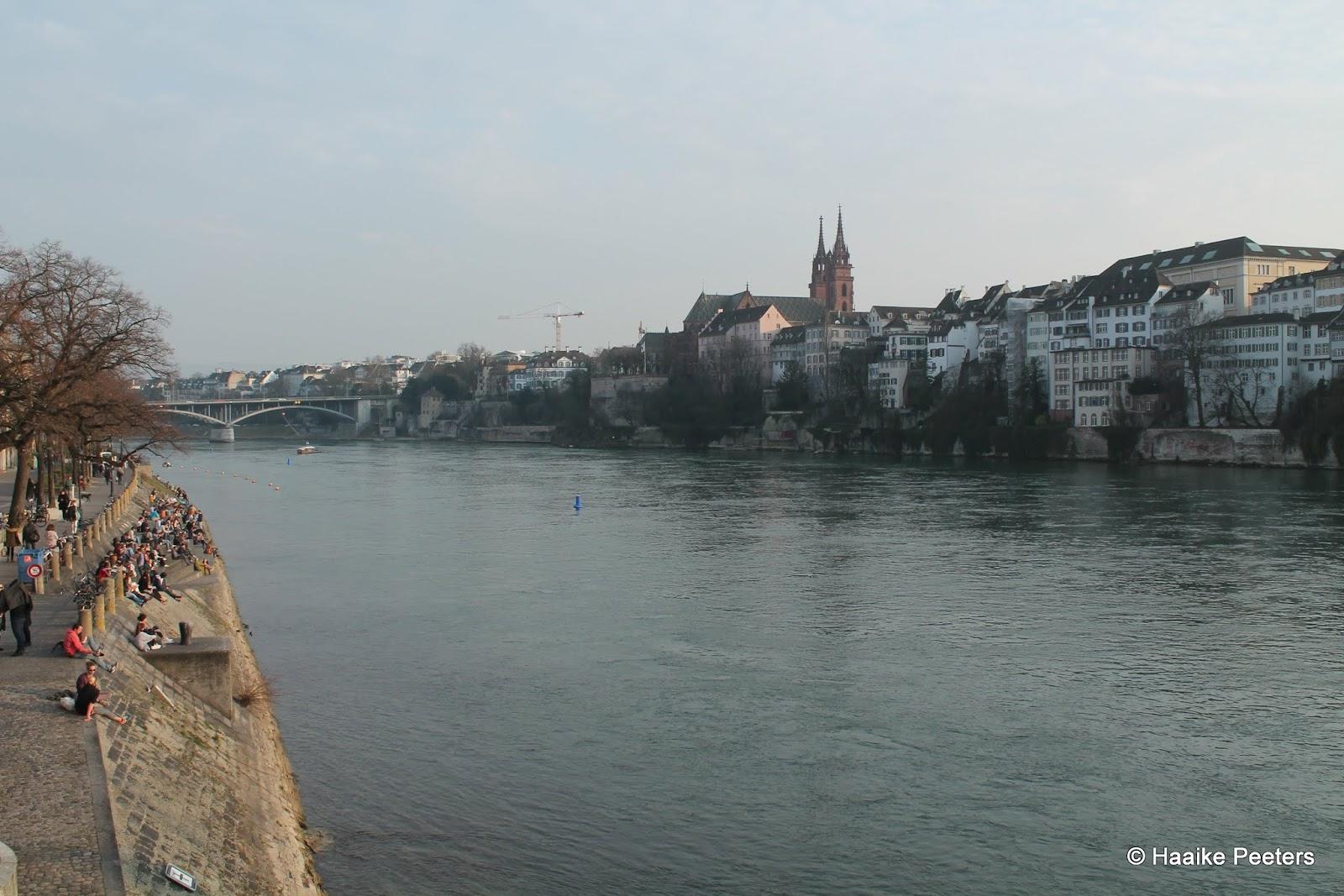 Basel (Le petit requin)