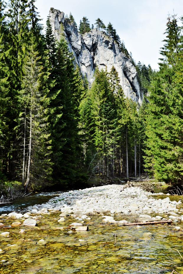 krajobraz tatr