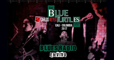 Poster CONCIERTO DE THE BLUE TURTLES Y CARLOS REYES