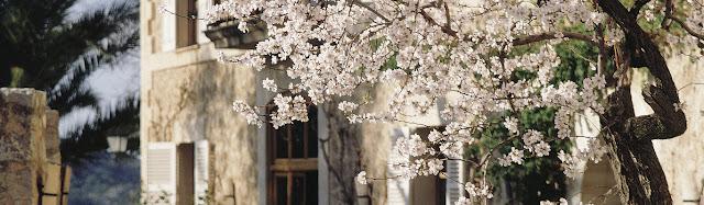 Travel : Belmond La Residencia - Mallorca, Spain {Cool Chic Style Fashion}