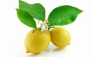 Benefits And Efficacy Of Orange Lemon Leaf For Health - Healthy T1ps
