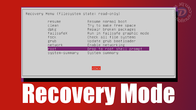 Linux Recovery Mode