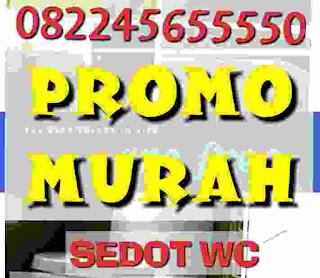 SEDOT LIMBAH GRESIK PROMO MURAH