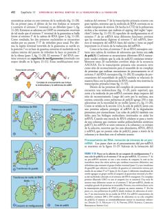 Libros Medicina en Pdf Biologia Celular Y Molecular 5 Ed