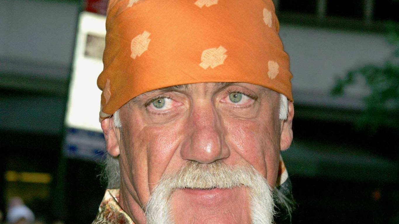 Hulk Hogan Wiki 1st Name All On People Named Hulk Songs Books Gift