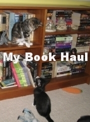 Stolen by Erin Bowman, and Half Bad by Sally Green