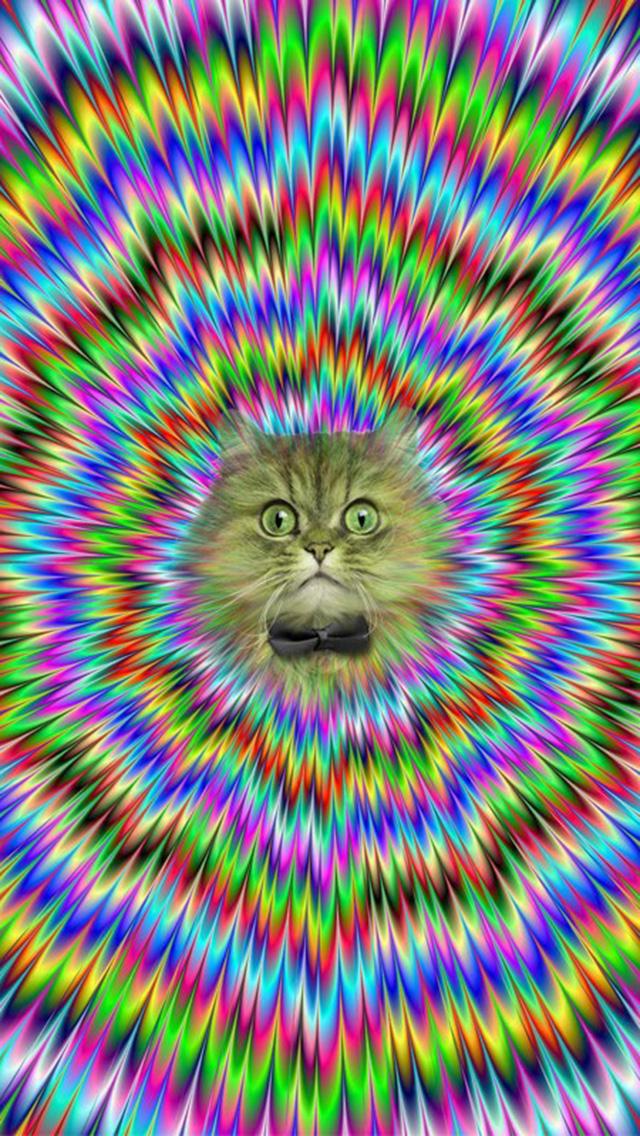trippy cat wallpaper hd - photo #20