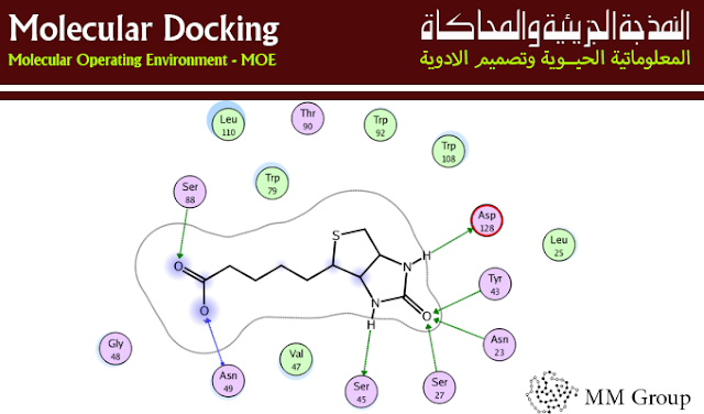 النمذجة الجزيئية وتصميم الأدوية Molecular Docking