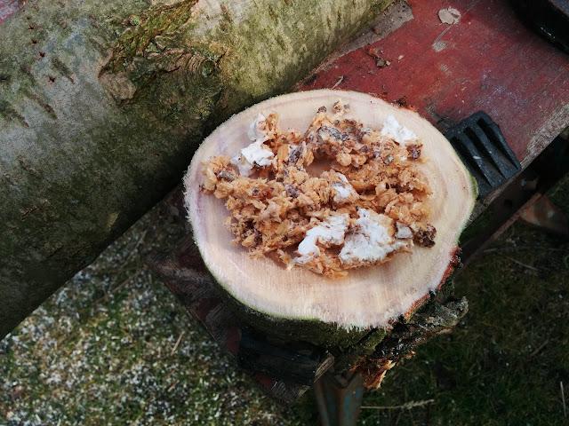 shiitakebroed houtmeel
