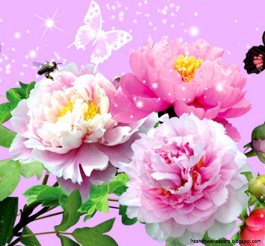 Animated Flowers Wallpapers Desktop