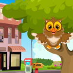 Games4king Cute Owl Rescue Walkthrough