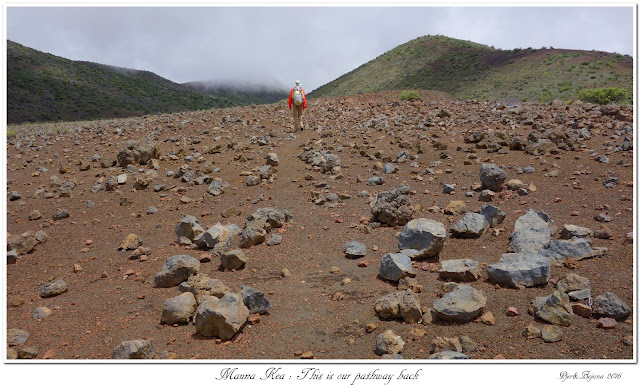 Mauna Kea: This is our pathway back