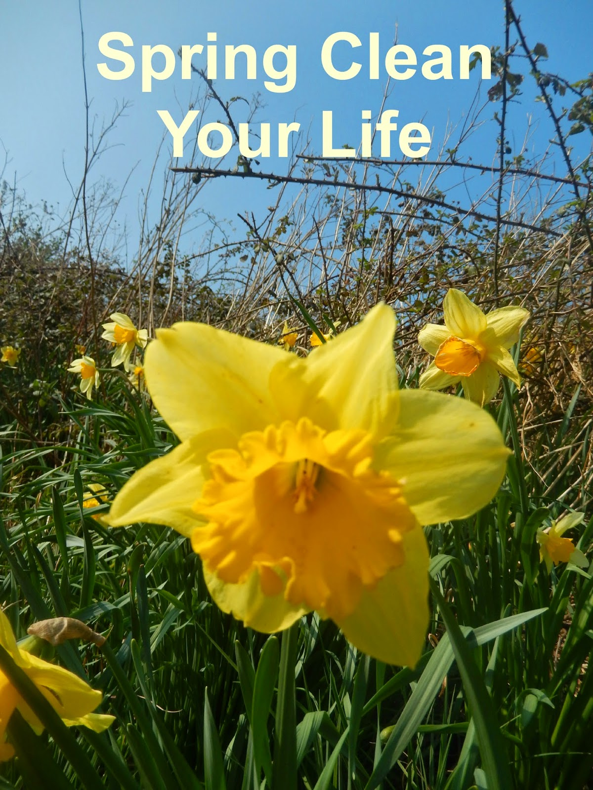 Spring Clean Your Life Choosehappiness