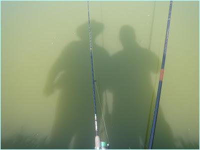 Pesqueiro Nabel, Pesca, Peixe