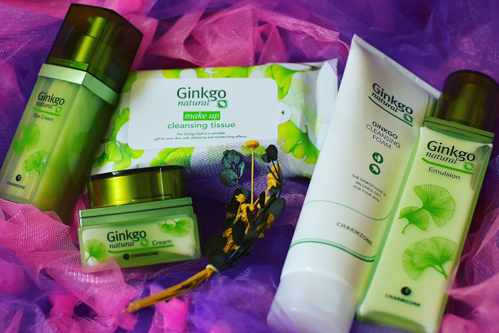 The Most Powerful Skincare From Korea - Ginkgo Natural