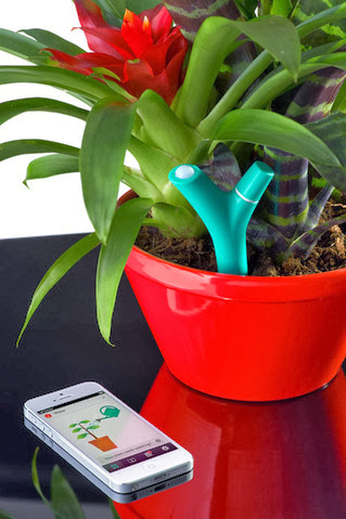 Innovative Gadgets That Lets You Know Your Plants Are Thirsty (13) 4