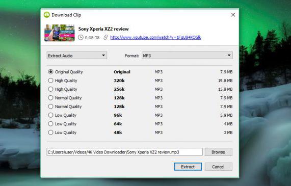 Cara Download Video YouTube secara Gratis di Ponsel Anda. 4