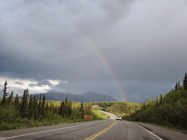 Denali national park 19
