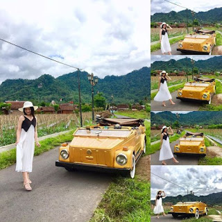 Wisata Sawah Svargabumi Magelang