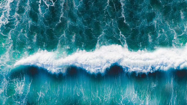 Científicos explican por qué los océanos cambiarán de color