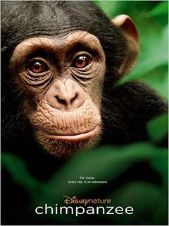 Chimpanzés