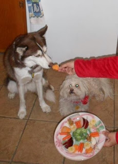 My dogs love healthy treats right from my kitchen