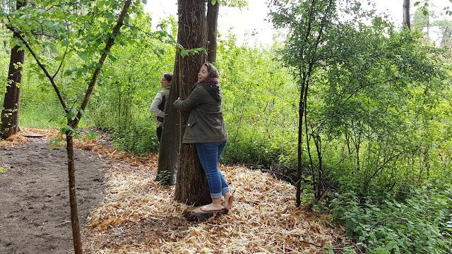 calins-aux-arbres-loisirs-loire-valley