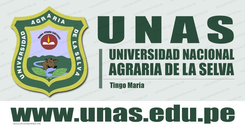 Resultados UNAS 2020-1 (Domingo 27 Octubre 2019) Lista de Ingresantes - Examen Admisión - Universidad Nacional Agraria de la Selva - Tingo María - Huánuco - www.unas.edu.pe