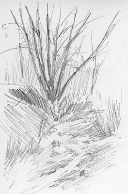 art sketch plein air pencil nature jordan river parkway