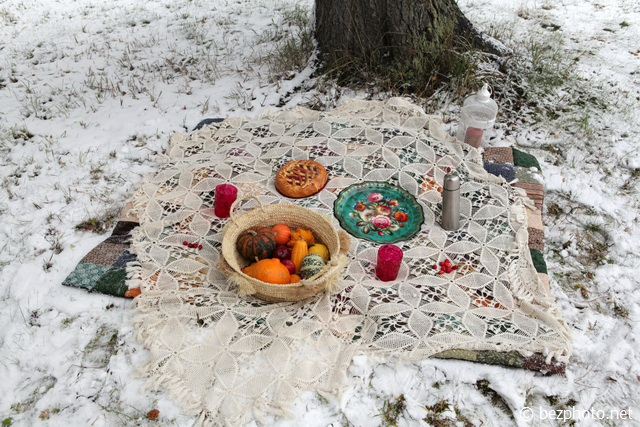 пикник зимой на природе