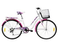 City Bike Wimcycle College 6 Speed 24 Inci