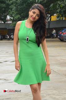 Actress Poonam Kaur Pictures in Green Short Dress at Prayanam Movie Opening  0029.JPG