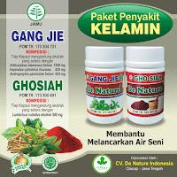 Jual Obat Herbal Sipilis Paling Ampuh untuk Pria dan Wanita