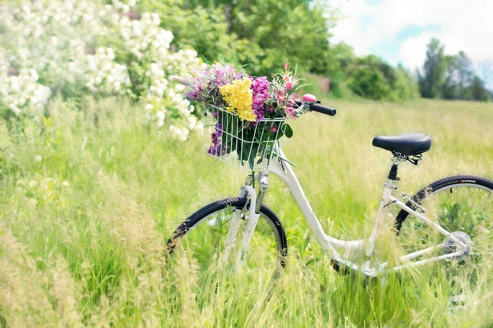 kilka propozycji rowerów, gdzie tanio kupić rower