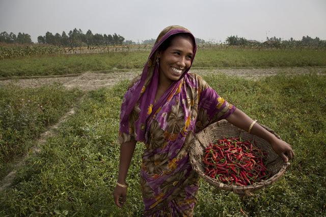 Joy gun the Baldgladeshi chilli farmer Oxfam