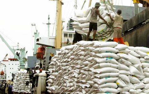 Nigeria to Produce 7 million Tonnes of Rice