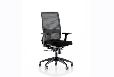 goldsit,fileli koltuk,çalışma koltuğu,ofis koltuğu,toplantı koltuğu,ofis sandalyesi,plastik ayaklı,fox