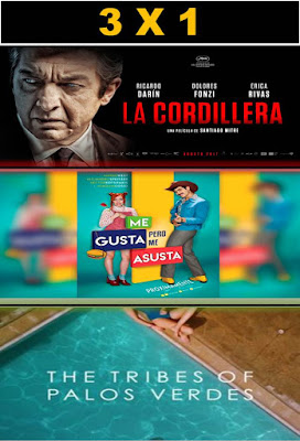 Combo Pack Vol 91 2017 DVD Custom NTSC Latino