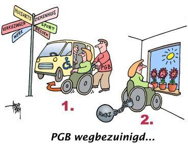 gevolg beleid pgb