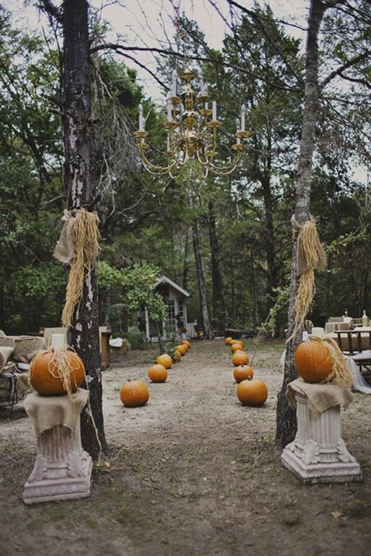 fall Halloween wedding reception Ideas 2016