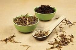 Πράσινο και μαύρο τσάι - Τα Οφέλη και οι Παρενέργεις