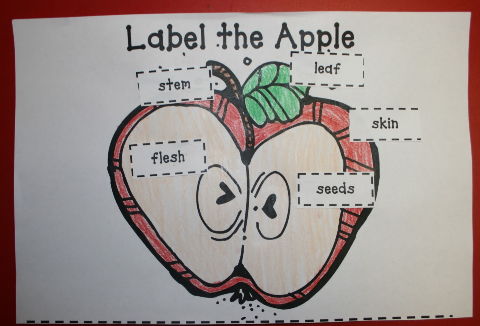 Mrs Mayas Kindergarten Apples Apples