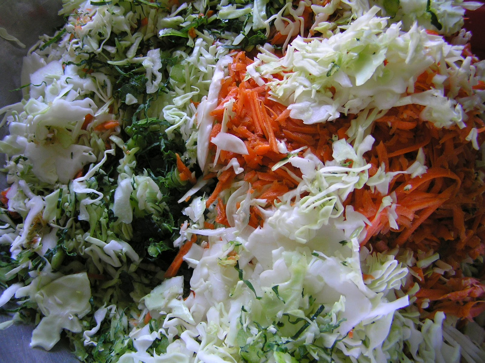 shredded vegetables for sauerkraut