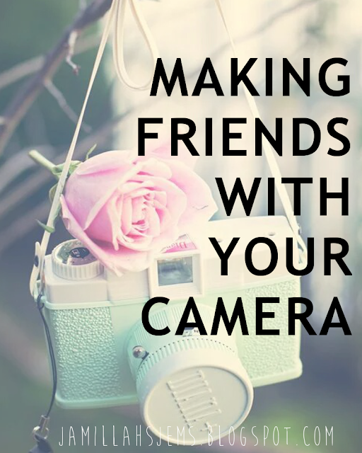 http://jamillahsjems.blogspot.com/2016/03/making-friends-with-your-camera-how-to.html