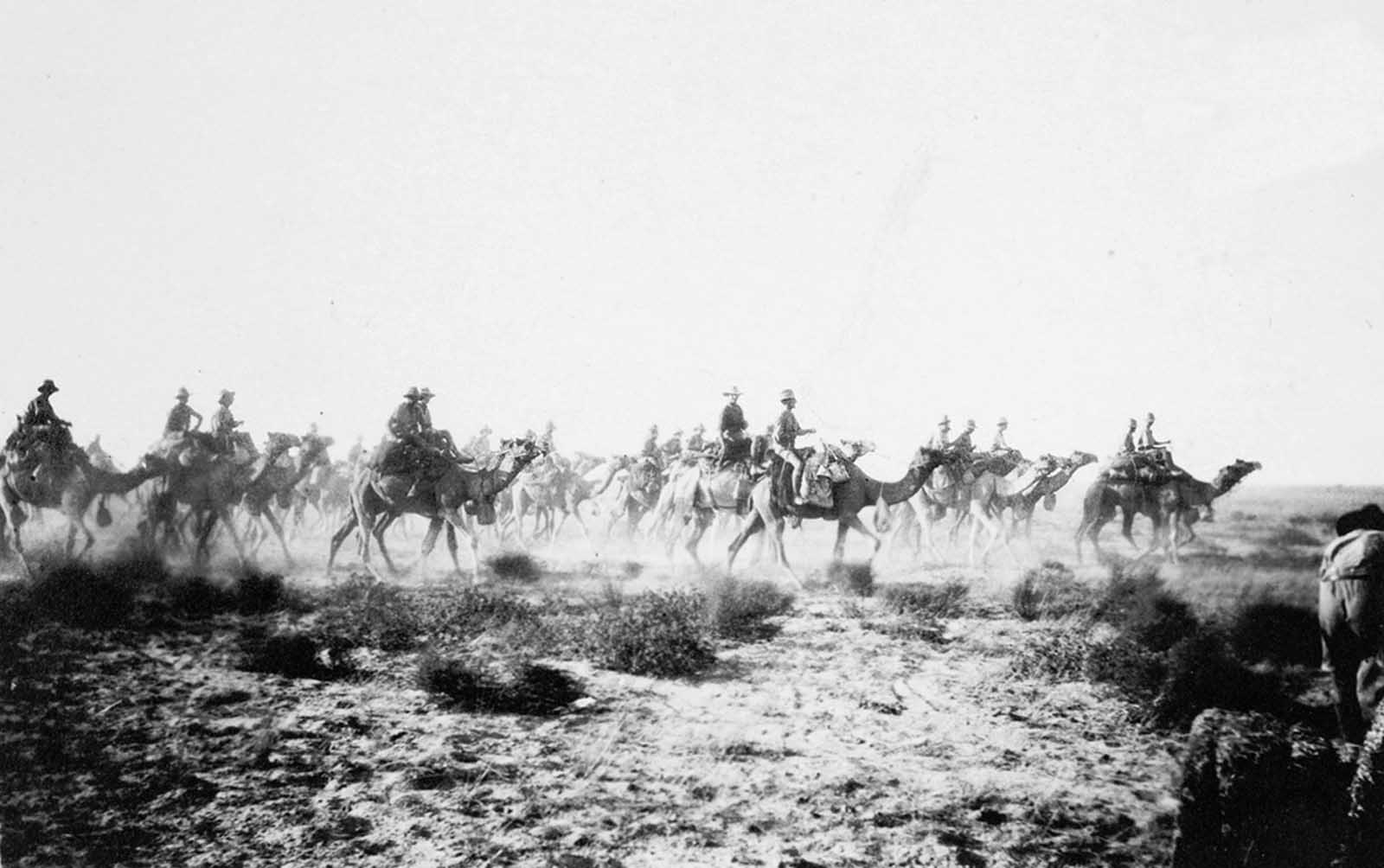 Australian Camel Corps going into action at Sharia near Beersheba, in December of 1917. The Colonel and many of these men were killed an hour or so afterward.