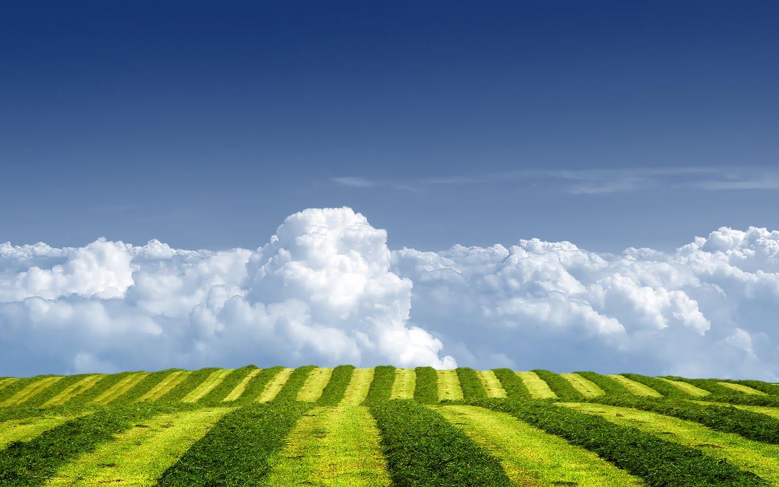 S Hd Image Wallpaper: Natuur Achtergronden