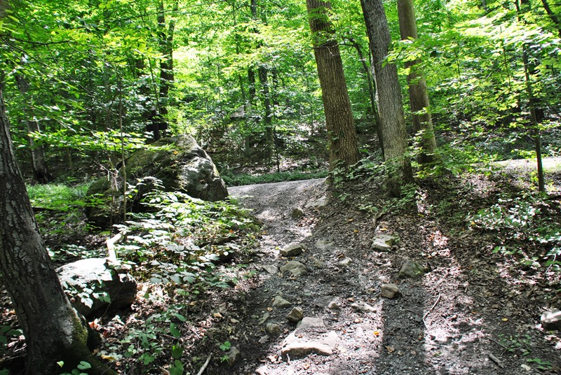 Southeastern PA Hiking: French Creek - Cooks Glen Road Trails